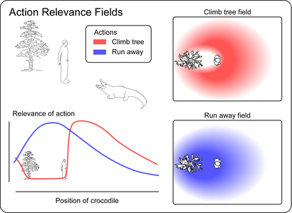 Action-Relevance fields (Bufacchi & Iannetti, 2018)
